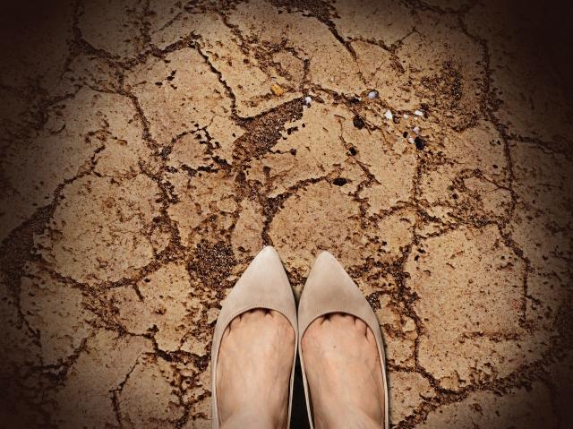 乾燥してひび割れた土
